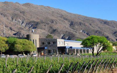La épica historia de nuestros vinos de altura